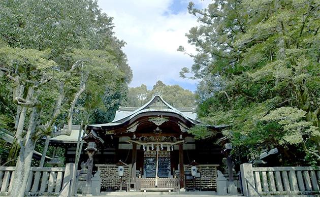岡崎神社の写真