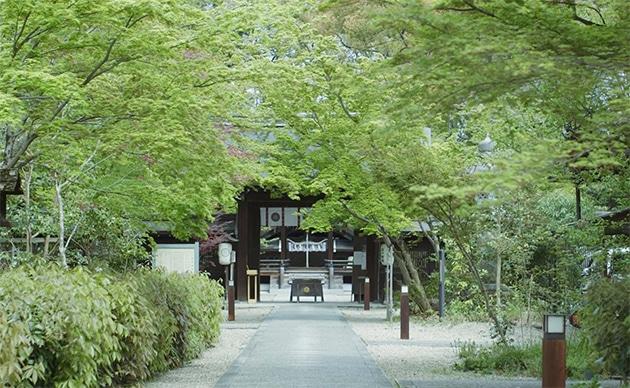 梨木神社の写真